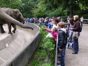 05-zoo-hagenbeck-2011