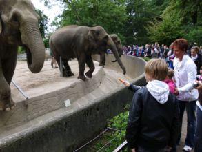 06-zoo-hagenbeck-2011