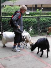 10-zoo-hagenbeck-2011