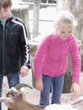 12-zoo-hagenbeck-2011