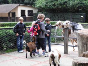 13-zoo-hagenbeck-2011