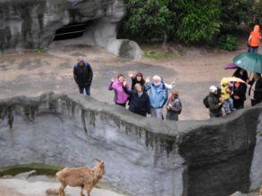 14-zoo-hagenbeck-2011