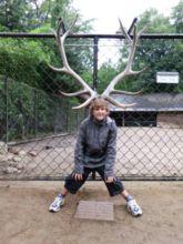 16-zoo-hagenbeck-2011