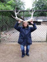 17-zoo-hagenbeck-2011
