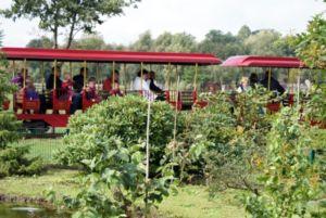 09jaderpark2011